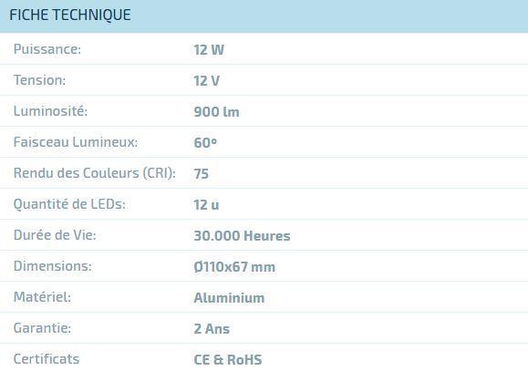 Ampoule LED AR111 12W (12V)