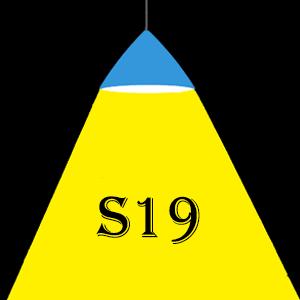 Ampoules LED S19